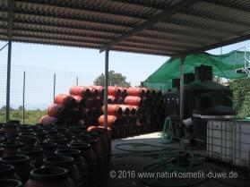 Besuch bei Mani Olivenöl Griechenland 08