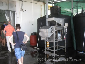Besuch bei Mani Olivenöl Griechenland 09
