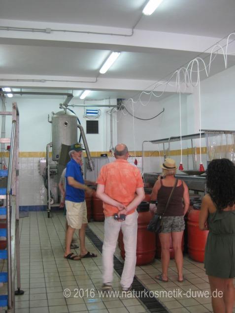 Besuch bei Mani Olivenöl Griechenland 10