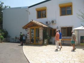 Besuch bei Mani Olivenöl Griechenland 11